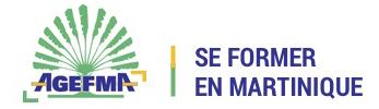 Se Former en Martinique Logo